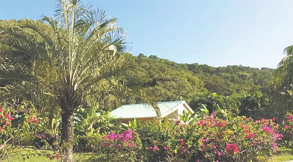 Gite Location Fleursdesiles Guadeloupe