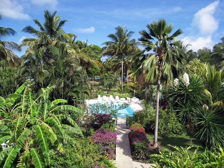 Piscine Parc Location Guadeloupe