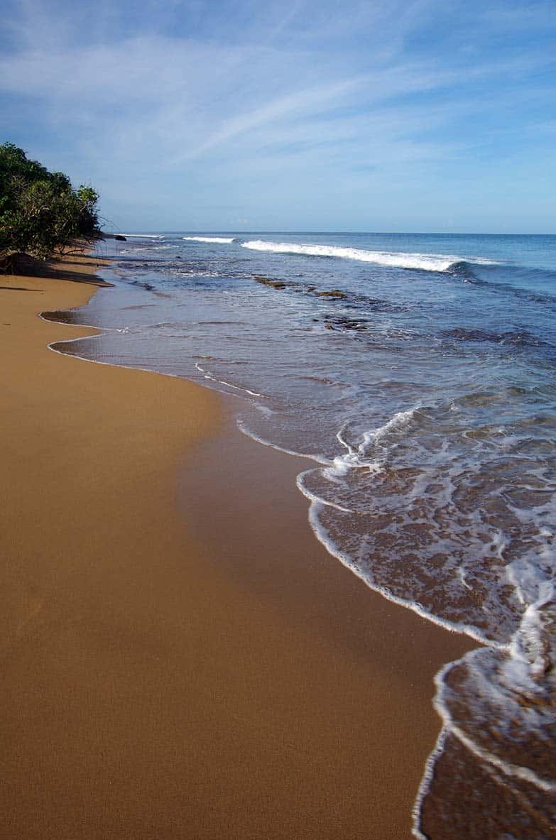 Plage Guadeloupe Deshaies Riflet